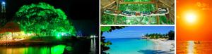 Un paraíso llamado Punta Faro