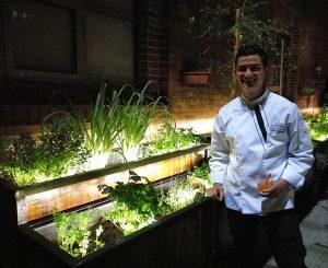 Chef Nelson Granados en la huerta.