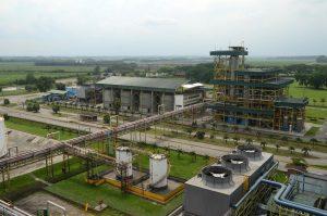 Un ingenio es un claro ejemplo de bioeconomía, Una cadena que nace en la agricultura y termina en eslabones como biofertilizantes, papel, energía eléctrica y etanol, entre muchos otros productos.