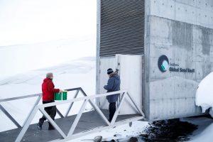 Entrada a la Bóveda de Semillas de Svalbard.